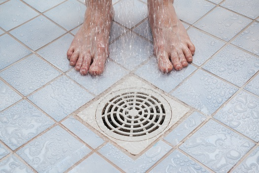 Clogs in Your Shower Drain
