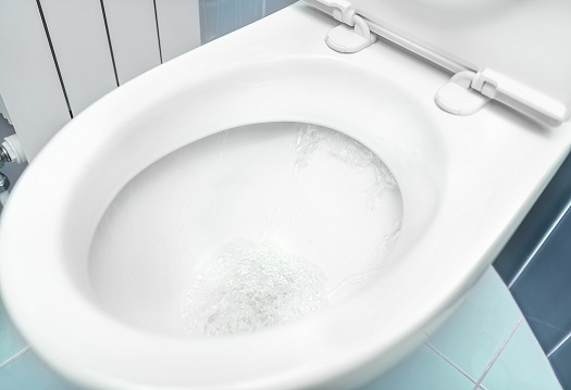 Water Flushing The Toilet
